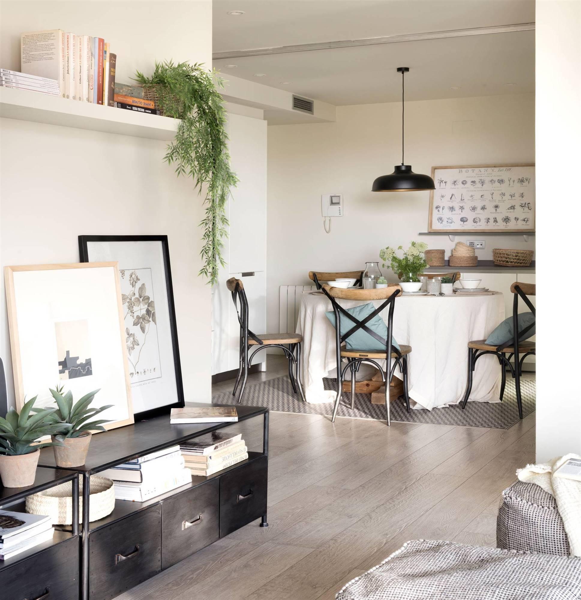 Plantas Ideales Para El Salon
