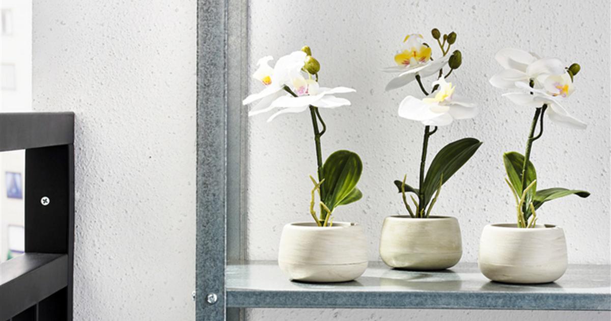 Plantas artificiales Ikea: ¿has visto ya sus novedades?