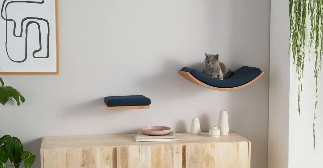 fotografía Él mismo Podrido  Los mejores y más geniales muebles y accesorios para gatos